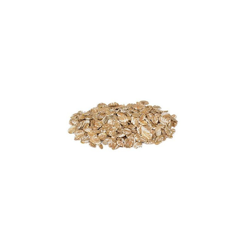 Økologiske rugflager 500 gram